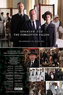 Španělská chřipka: Zapomenutí padlí