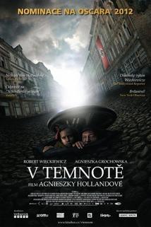 Plakát k filmu: V temnotě