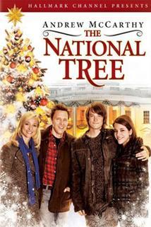 Národní Vánoční strom