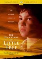 Škola malého stromu