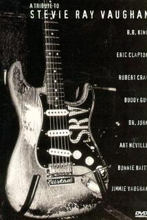 A Tribute to Stevie Ray Vaughan  - A Tribute to Stevie Ray Vaughan