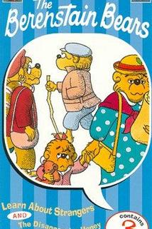 The Berenstain Bears  - The Berenstain Bears