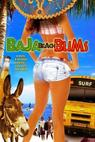 Baja Beach Bums (2009)