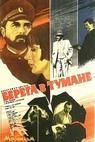 Mglistye berega (1986)