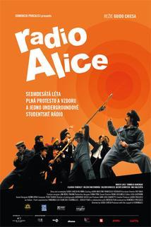 Radio Alice  - Lavorare con lentezza