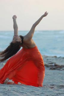 Danzar Miami