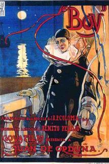Plakát k filmu: Boy