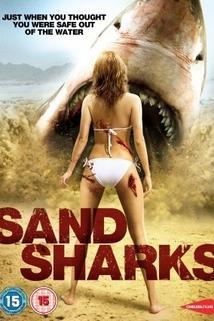 Píseční žraloci
