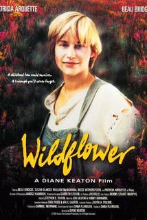 Divoký květ  - Wildflower