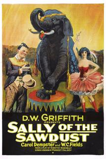 Sally of the Sawdust  - Sally of the Sawdust