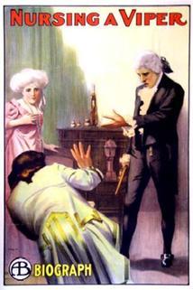 Nursing a Viper