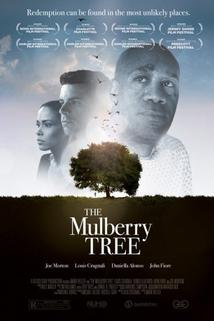 The Mulberry Tree  - The Mulberry Tree