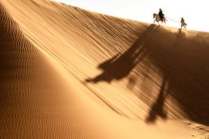 Osamělý jezdec