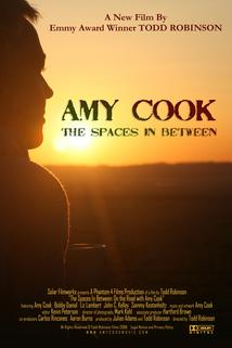 Amy Cook: The Spaces in Between