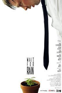 Wait for Rain  - Wait for Rain