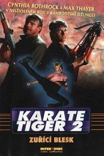 Karate tiger 2: Zuřící blesk