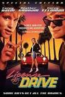 Řidičák (1988)