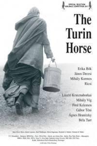 Turínský kůň