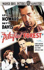 Zkamenělý les  - The Petrified Forest