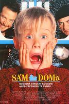 Plakát k filmu: Sám doma