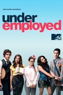 Underemployed  - Underemployed