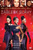 Plakát k filmu: Záblesk slávy