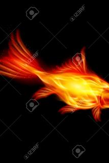 A Goldfish of the Flame