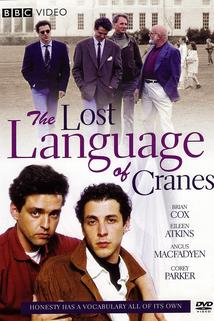 The Lost Language of Cranes  - The Lost Language of Cranes