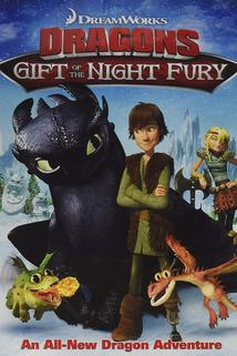Dragons: Gift of the Night Fury  - Dragons: Gift of the Night Fury
