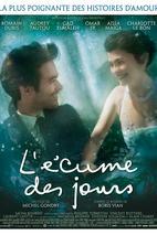 Plakát k filmu: Pěna dní