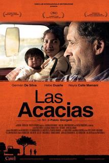 Plakát k filmu: Akáty