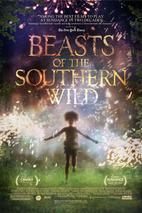 Plakát k filmu: Divoká stvoření jižních krajin