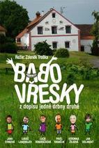 Plakát k filmu: Babovřesky