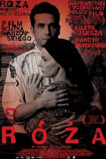 Plakát k filmu: Růžena
