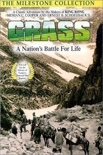 Nomádi – Bitva o pastvu  - Grass: A Nation's Battle for Life