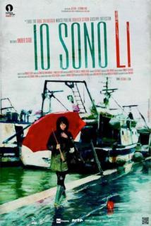 Plakát k filmu: Shun Li a Básník