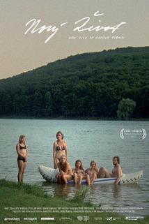 Plakát k filmu: Nový život rodinného alba
