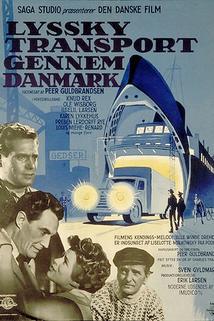Lyssky transport gennem Danmark