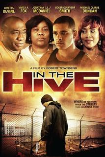 In the Hive  - In the Hive