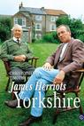 James Herriot's Yorkshire: The Film (1993)