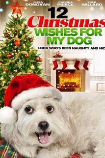 12 vánočních přání