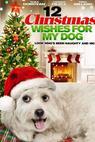 12 vánočních přání (2011)