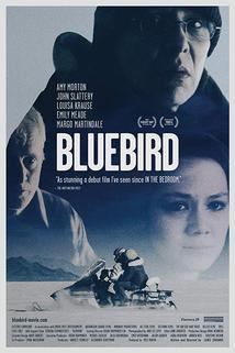 Ptáče  - Bluebird