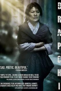 Plakát k filmu: Dabži