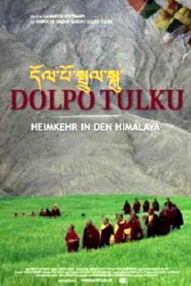 Plakát k filmu: Dolpo Tulku: Návrat do Himálaje