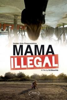 Plakát k filmu: Ilegální máma