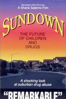 Sundown: The Future of Children and Drugs