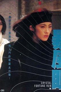 Bao feng yan
