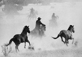 Malí kovbojové