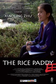 La rizière